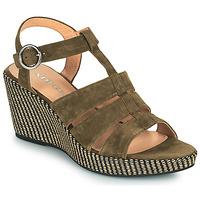 Παπούτσια Γυναίκα Σανδάλια / Πέδιλα Adige FLORY V5 VELOURS MILITAIRE Kaki