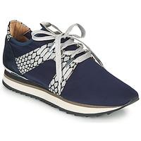 Παπούτσια Γυναίκα Χαμηλά Sneakers Adige XAN V4 KOI SILVER Μπλέ