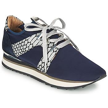 Xαμηλά Sneakers Adige XAN V4 KOI SILVER ΣΤΕΛΕΧΟΣ: Δέρμα & ΕΠΕΝΔΥΣΗ: Δέρμα & ΕΣ. ΣΟΛΑ: Δέρμα & ΕΞ. ΣΟΛΑ: Καουτσούκ