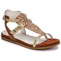 Παπούτσια Γυναίκα Σανδάλια / Πέδιλα Regard BAZUR2 Brown