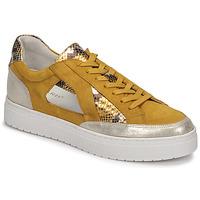 Παπούτσια Γυναίκα Χαμηλά Sneakers Regard HARY2 Yellow