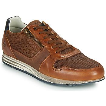 Παπούτσια Άνδρας Χαμηλά Sneakers Bullboxer 477K26343FKNCG Brown