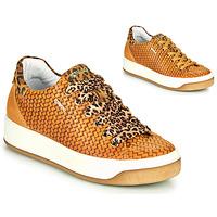 Παπούτσια Γυναίκα Χαμηλά Sneakers IgI&CO SHOUHAI Ocre
