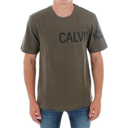 Υφασμάτινα Άνδρας T-shirt με κοντά μανίκια Calvin Klein Jeans J30J313258 LFH GRAPE LEAF Verde