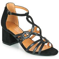Παπούτσια Γυναίκα Σανδάλια / Πέδιλα The Divine Factory QL4327 Black