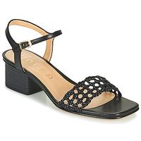 Παπούτσια Γυναίκα Σανδάλια / Πέδιλα Unisa KEMPIS Black