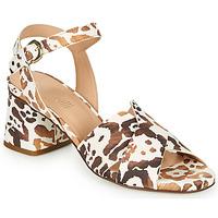 Παπούτσια Γυναίκα Σανδάλια / Πέδιλα Fericelli ONAPA Beige / Gold