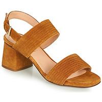 Παπούτσια Γυναίκα Σανδάλια / Πέδιλα Fericelli MARRAK Camel