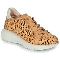 Παπούτσια Γυναίκα Χαμηλά Sneakers Hispanitas TELMA Camel / Beige