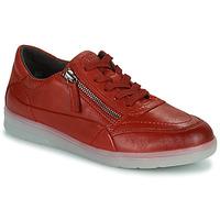 Παπούτσια Γυναίκα Χαμηλά Sneakers Jana PHOEBIA Red