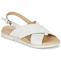Παπούτσια Γυναίκα Σανδάλια / Πέδιλα Mjus KETTA Άσπρο