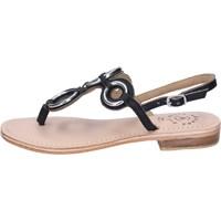 Παπούτσια Γυναίκα Σανδάλια / Πέδιλα Adriana Del Nista Σανδάλια BK994 Μαύρος