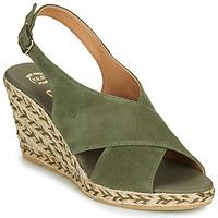 Παπούτσια Γυναίκα Σανδάλια / Πέδιλα Betty London OHINDRA Kaki