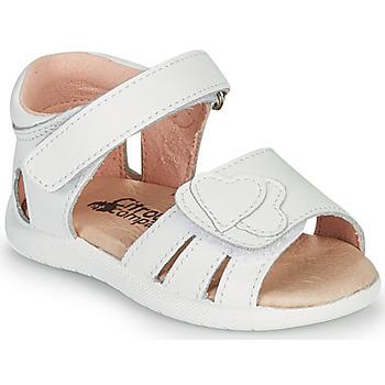 Παπούτσια Κορίτσι Σανδάλια / Πέδιλα Citrouille et Compagnie OLESS Άσπρο