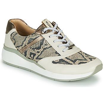 Παπούτσια Γυναίκα Ψηλά Sneakers JB Martin 1KALIO Beige