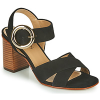Παπούτσια Γυναίκα Σανδάλια / Πέδιλα JB Martin 1NICKY Black