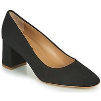 Παπούτσια Γυναίκα Μπαλαρίνες JB Martin NORMAN Black