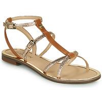 Παπούτσια Γυναίκα Σανδάλια / Πέδιλα JB Martin 1GRIOTTES Brown