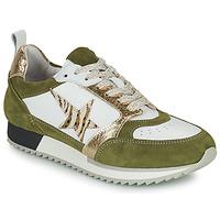 Παπούτσια Γυναίκα Χαμηλά Sneakers Philippe Morvan ROOXY V2 Άσπρο / Kaki