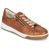 Παπούτσια Γυναίκα Χαμηλά Sneakers Ara ROM-HIGHSOFT Brown