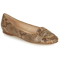 Παπούτσια Γυναίκα Μπαλαρίνες Betty London OVINOU Taupe