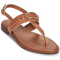 Παπούτσια Γυναίκα Σανδάλια / Πέδιλα Minelli LIZA Brown