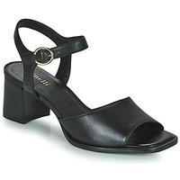 Παπούτσια Γυναίκα Σανδάλια / Πέδιλα Minelli TURINA Black