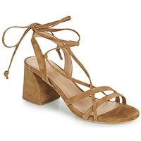 Παπούτσια Γυναίκα Σανδάλια / Πέδιλα Minelli TATIA Brown