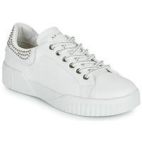 Παπούτσια Γυναίκα Χαμηλά Sneakers Café Noir THINA Άσπρο
