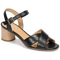 Παπούτσια Γυναίκα Σανδάλια / Πέδιλα Dream in Green ODAINE Black