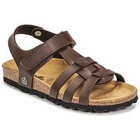 Παπούτσια Αγόρι Σανδάλια / Πέδιλα Citrouille et Compagnie JANISOL Brown / Fonce