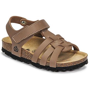 Παπούτσια Αγόρι Σανδάλια / Πέδιλα Citrouille et Compagnie JANISOL Brown / Taupe