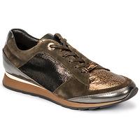 Παπούτσια Γυναίκα Χαμηλά Sneakers JB Martin VILNES Kaki