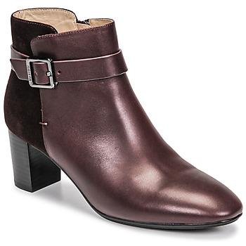 Παπούτσια Γυναίκα Μποτίνια JB Martin AELIS Vigne