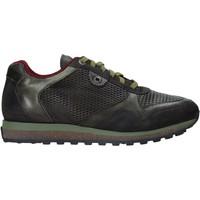 Παπούτσια Άνδρας Χαμηλά Sneakers Exton 340 Πράσινος