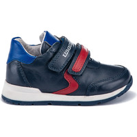 Παπούτσια Παιδί Χαμηλά Sneakers Lumberjack SB65111 004 B01 Μπλε