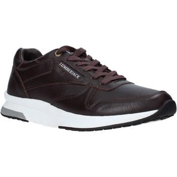 Παπούτσια Άνδρας Χαμηλά Sneakers Lumberjack SM87012 003 B01 καφέ
