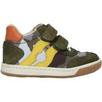 Παπούτσια Αγόρι Ψηλά Sneakers Falcotto 2015271 02 Πράσινος