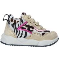 Παπούτσια Παιδί Sneakers Falcotto 2015423 02 Χρυσός