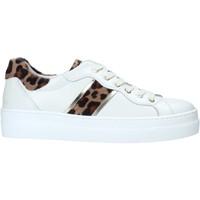 Παπούτσια Γυναίκα Χαμηλά Sneakers NeroGiardini I013230D λευκό