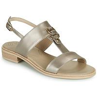 Παπούτσια Γυναίκα Σανδάλια / Πέδιλα NeroGiardini PLUIE Gold