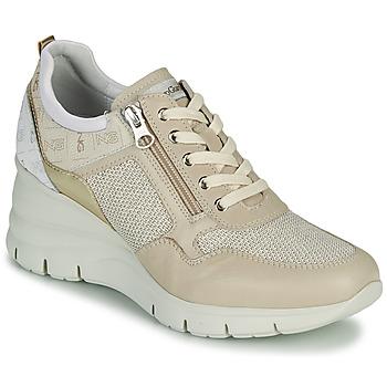 Παπούτσια Γυναίκα Χαμηλά Sneakers NeroGiardini FLORA Beige / Gold
