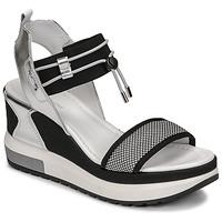 Παπούτσια Γυναίκα Σανδάλια / Πέδιλα NeroGiardini CAMINO Black / Silver