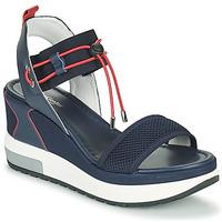 Παπούτσια Γυναίκα Σανδάλια / Πέδιλα NeroGiardini CAMINO Marine / Red