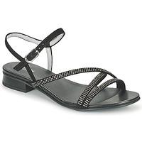 Παπούτσια Γυναίκα Σανδάλια / Πέδιλα NeroGiardini TEDDY Black