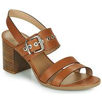 Παπούτσια Γυναίκα Σανδάλια / Πέδιλα NeroGiardini GHILLO Cognac