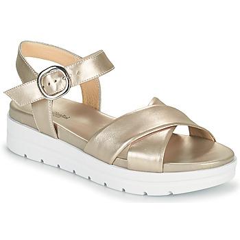 Παπούτσια Γυναίκα Σανδάλια / Πέδιλα NeroGiardini LONELESS Gold