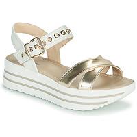 Παπούτσια Γυναίκα Σανδάλια / Πέδιλα NeroGiardini TIMMA Άσπρο / Gold