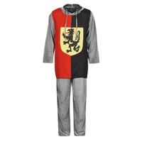 Υφασμάτινα Άνδρας Μεταμφιέσεις Fun Costumes COSTUME ADULTE SIR GAWAIN Multicolour