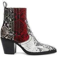 Παπούτσια Γυναίκα Μπότες Steve Madden SMSGENIVA-BRGGRY Μαύρος